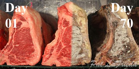 Produk Nature Stek aged usda prime black angus t bone steak