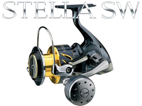 Reel Sure Cath 6000 new shimano stella swb coming soon accepting orders now