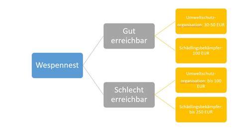 Wespennest Vermieter by Wespennest Entfernen Lassen Umsiedeln Haus Garten Dach