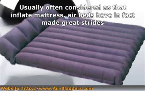 Air Bladder Mattress by Air Bladder Mattress Beds The Different Between The