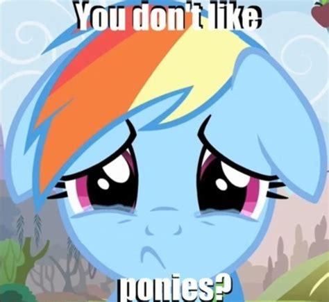 Mlp Rainbow Dash Meme - 37 best my little pony memes images on pinterest mlp