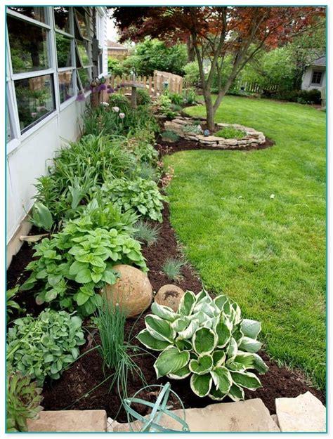 indoor flowering plants no sunlight the best 28 images of indoor flowering plants no sunlight