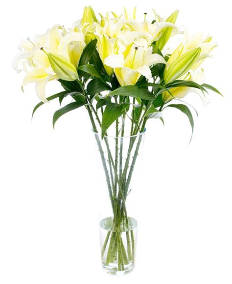 fortnightly flower delivery lilies yellow