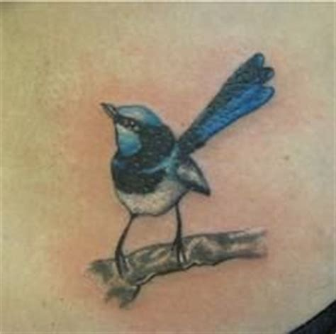 blue wren tattoo designs 1000 images about ideas on zodiac