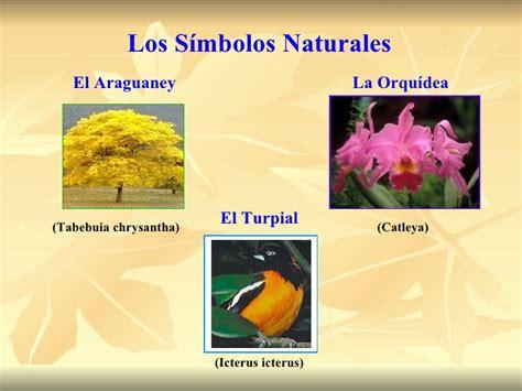 imagenes simbolos naturales de venezuela identidad nacional