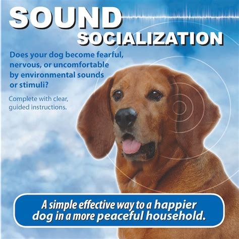 puppies sounds sound socialization best