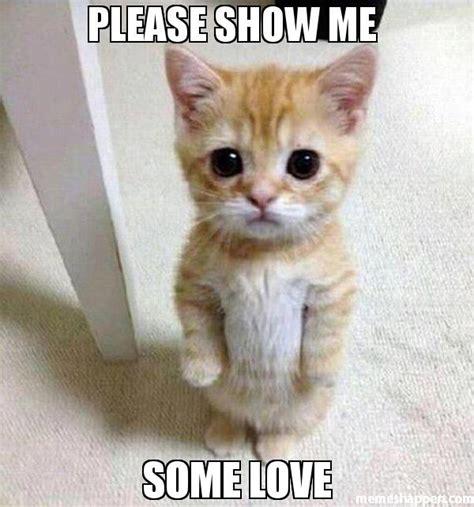 Show Me Some Memes - please show me some love meme kitten timesheet 45282