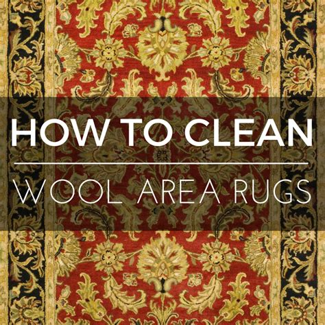 How To Clean An Area Rug At Home by How To Clean A Wool Area Rug The Definitive Guide To