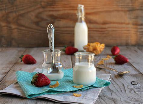 yogurt fatto in casa con yogurtiera yogurt fatto in casa senza yogurtiera creazioni in