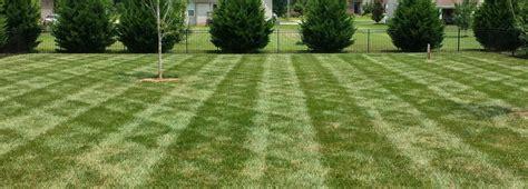 landscaping murfreesboro tn landscaping murfreesboro tn all summer