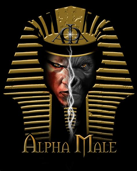the gallery for gt ideas for on hip 19 alpha phi alpha designs 620 best images