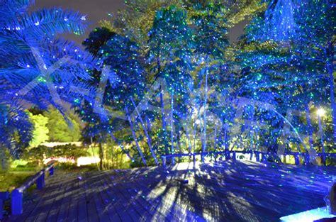 best new lights outdoor garden decoration projector laser lighting