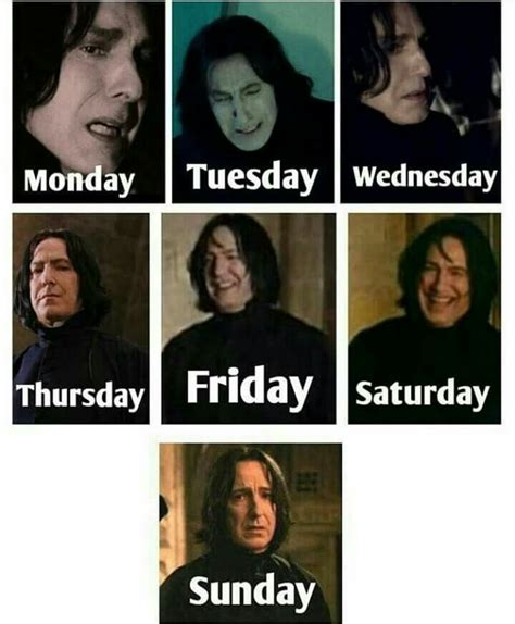 Snape Meme Generator - 25 best ideas about snape meme on pinterest funny harry