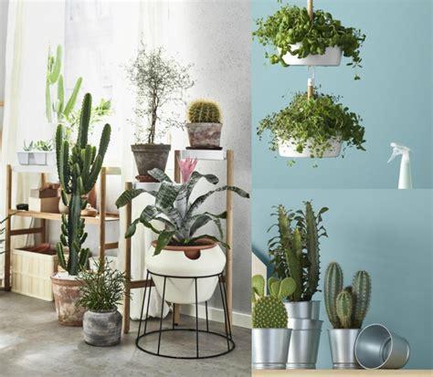 pflanzen deko pflanzen raumteiler ikea wohn design