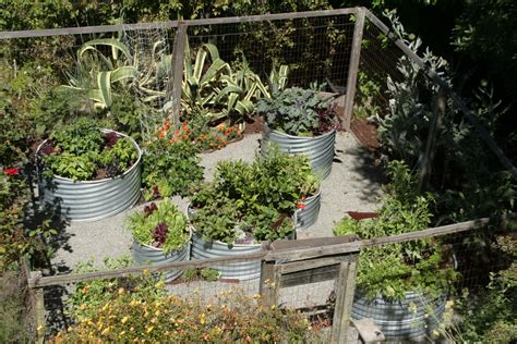 garden gate landscaping 25 stunning garden gate landscaping fredericton izvipi