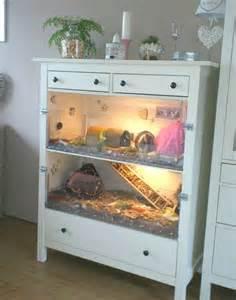 les 25 meilleures id 233 es concernant cages pour hamsters sur