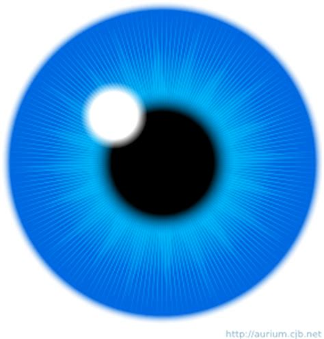 blue eye iris clip art   svg   vector