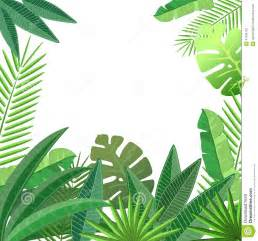 tropical leaves floral design stock vector image 47394702