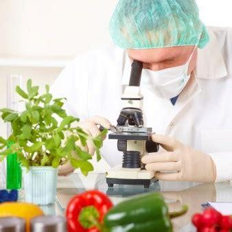 offerte di lavoro tecnologo alimentare tecnologo alimentare cosa fa e dove lavora curriculum