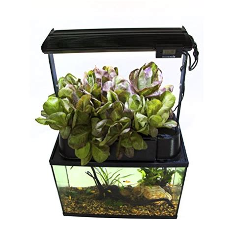 eco cycle aquaponics kit  dual  grow light pet supplies