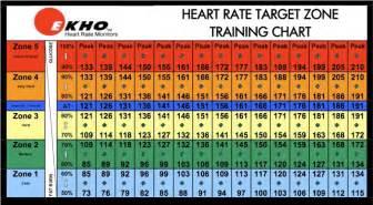 Heart rate chart total body development