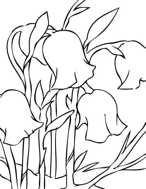 spring flower coloring pages flowers coloring sheet spring flower coloring pages coloringsuite com