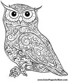 199 best coloring pages owls images on pinterest