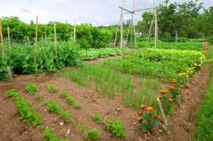 Raised Garden Beds Youtube - 24 fantastic backyard vegetable garden ideas