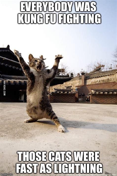Meme Kung Fu - do not underestimate meme kung fu imgflip