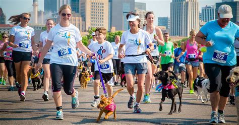 run faster from the 5k to the marathon how to be your own best coach ebook run the fast and the furry 5k 8k with your dog