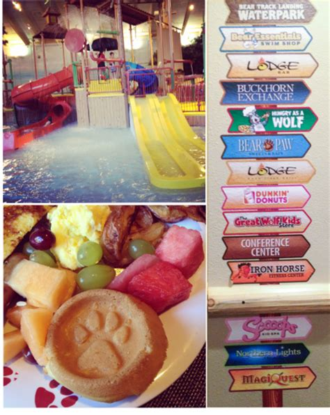 do frozen hot dogs expire book a family vacation to great wolf lodge new england