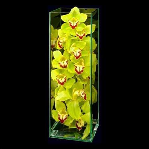 Eletragesi Cymbidium Orchid Centerpieces Images The World S Catalog Of Ideas