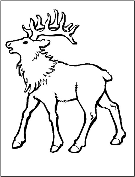 Elk Coloring Pages Az Coloring Pages Elk Coloring Page