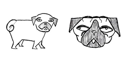 how to draw a pug easy how to draw a pug edition