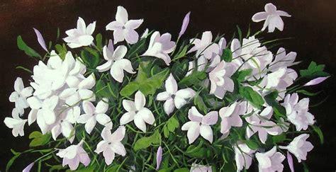 imagenes de amor para jazmin flor de jazm 237 n para conciliar el sue 241 o dormitia