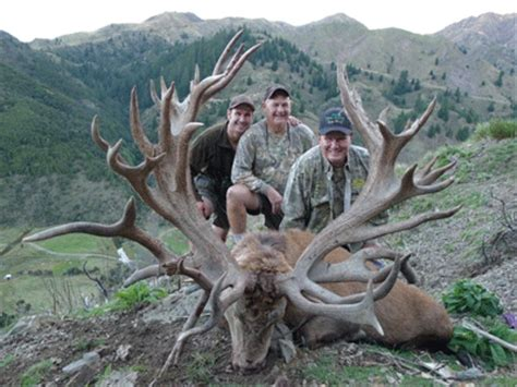 World Record Deer Rack by World Record Stag New Zealand