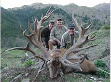 World Record Red Stag, New Zealand | Hunting Hunter Rawlings Facebook