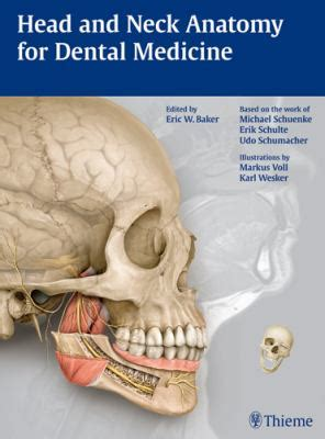 Anatomy For Dental Medicine and neck anatomy for dental medicine with access