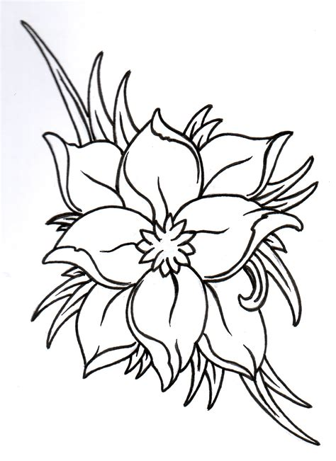 Outline Sketches Of Flowers by Flower Outline Pictures Cliparts Co