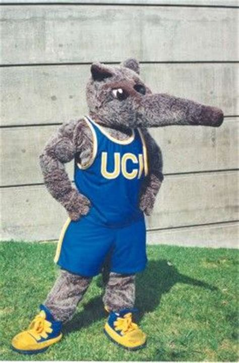 meet my mascots looks bad 68 best images about college mascots on see