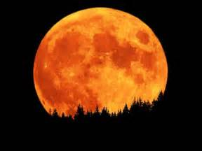 harvest moon star signposts week of november 24 30 earthword skyword