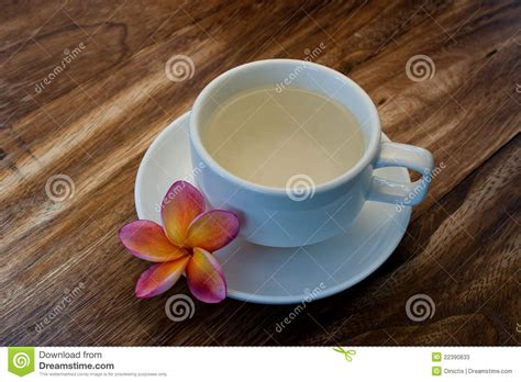 plumeria tea tropical plumeria with green chinese tea for spa stock