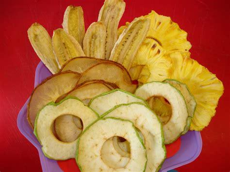 fruit dehydrator dehydrator dehydrator recipes fruit