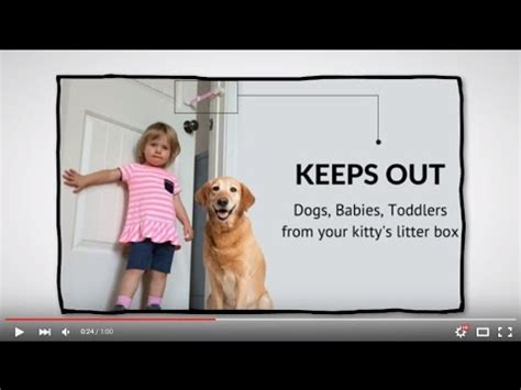litter box to keep dogs out how to keep out of litter box peek a boo latch doovi
