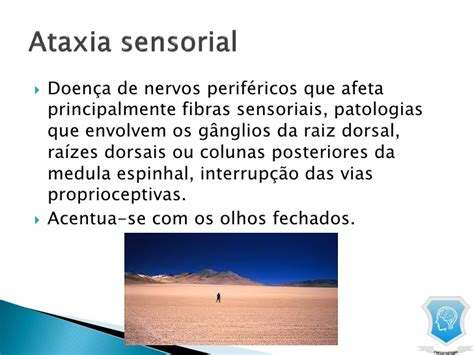 Cd E Book Dejong S The Neurologic Examination 7e dejong o exame neurologico 6 edicao pdf