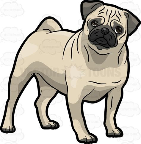 pug clipart clipart a pug tilting its to the side