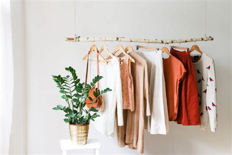 Modern Brach Clothing Rack Hanging Branch Clothing Rack