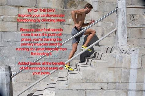 Run Stairs To Build Strength And Endurance by 210 Best Images About On