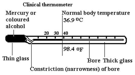 clinical thermometer labeled diagram the importance of measuring temperature and