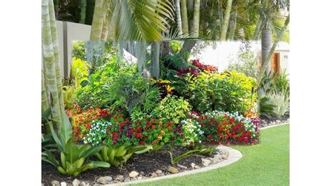 small tropical garden ideas